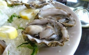 Old Orchard Oysters